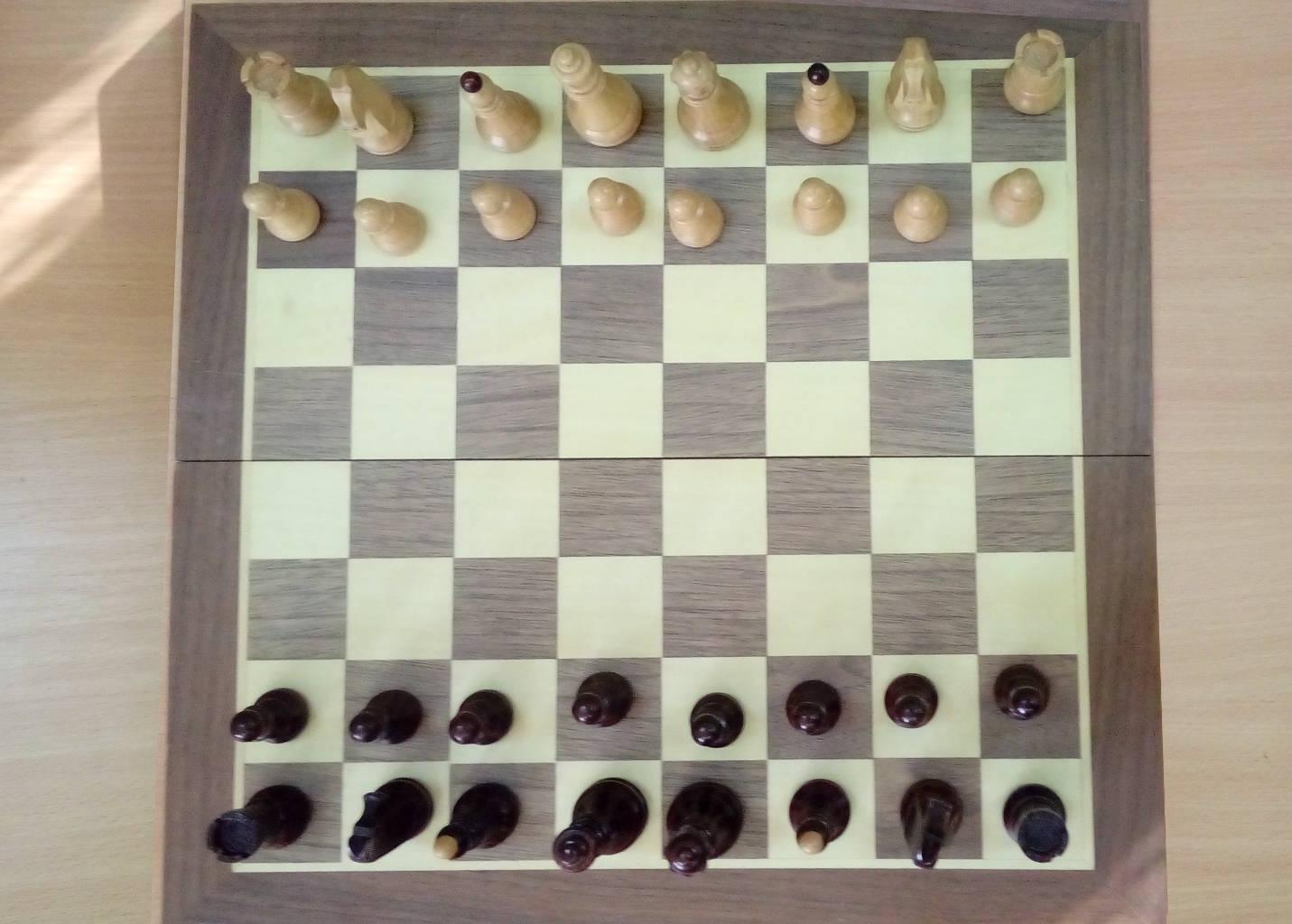 Првенство школе у шаху