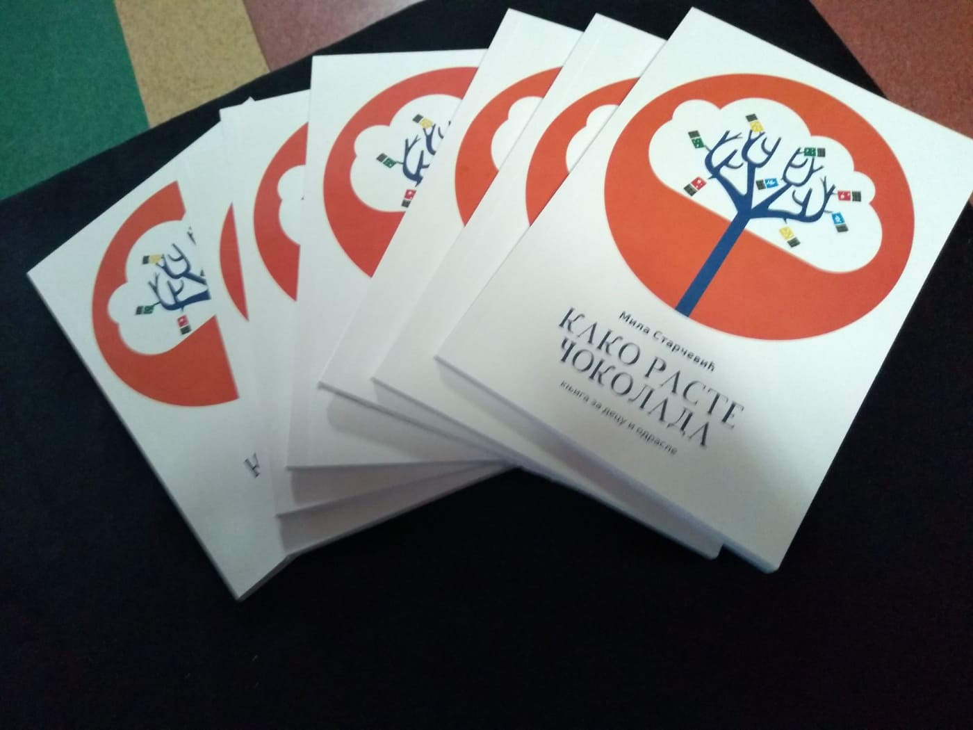 Промоција књиге Миле Старчевић у нашој школи