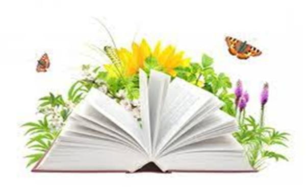 Књижевна олимпијада - републичко такмичење